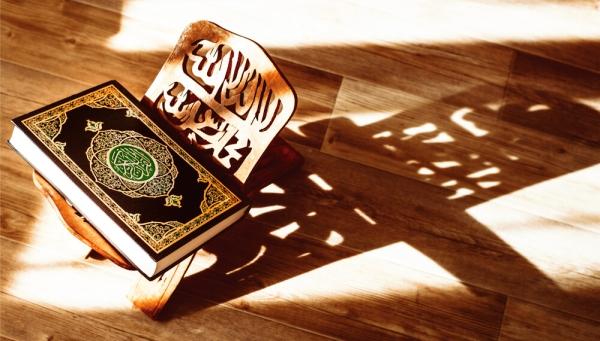 الأخذ بالأسباب في القرآن