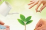 دور التربية الإيمانية في تنمية المسؤولية الأخلاقية
